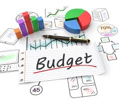 Managing Budgets for Advancing Professionals (BUDPRO)