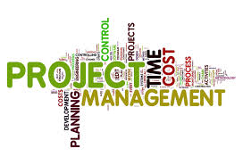 Advanced Project Management (ADVPM)