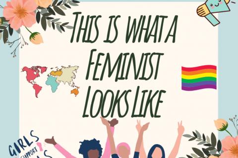 Feminism 101 (CM02_MSHS)