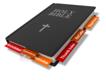 Curso 2: Tipos de Biblias