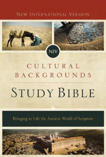 10 Minute Training: NIV Cultural Backgrounds Study Bible (CBSB2016)