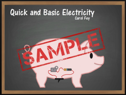 Quick and Basic Electricity SAMPLE