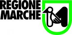 """Regione Marche 61 posti categoria """"C"""" e """"D"""" bandito dai Centri dell'Impiego"""