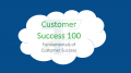 Fundamentals of Customer Success (CSM 100)