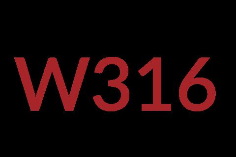 2021-2029 Women's Development Program Compulsory Materials (316)