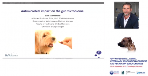 Antimicrobial Impact on the Gut Microbiome
