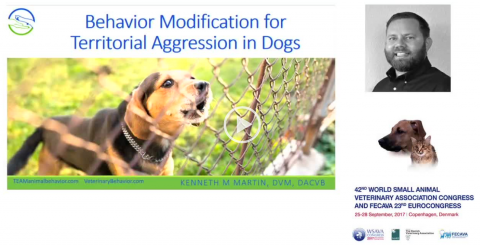 Behaviour Modification for Territorial Aggression in Dogs