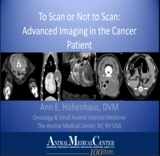 Advanced imaging in the cancer patient 2014
