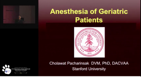 Anesthesia of Geriatric Patients