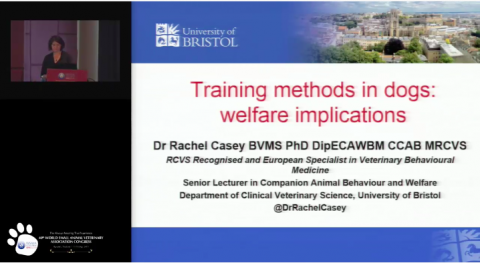 2015 Training methods in dogs: welfare implications