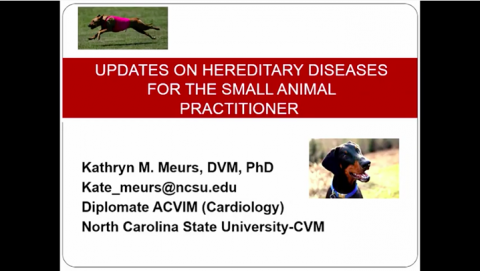 Updates on hereditary diseases for the small animal practitioner