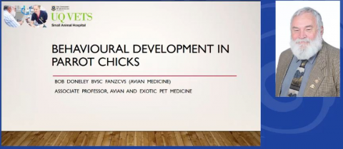 Behavioral Development In Chicks, And Management Of Associated Problems