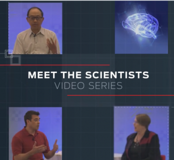 Meet the Scientists Brain - MCTs