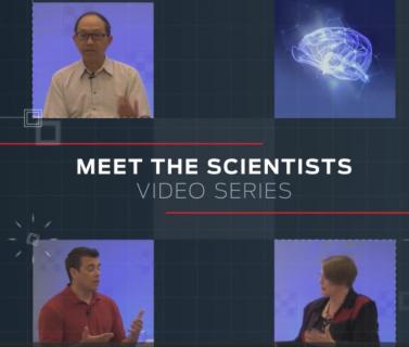 Meet the Scientists Brain - CDS
