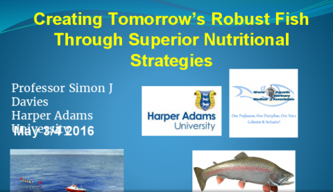 Creating Tomorrow's Robust Fish Through Superior Nutritional Strategies