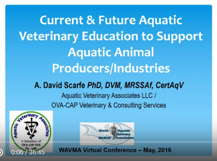Current and Future Aquatic Veterinary Education to support Aquatic Animal Producers/Industries