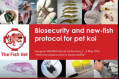 Biosecurity and new-fish protocol for pet Koi
