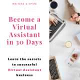 The Ultimate Virtual Assistant Guide (ebook)