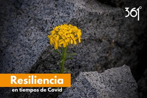 8. Resiliencia en tiempo de COVID - 361°