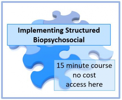 Implementing Structured Biopsychosocial (D02)