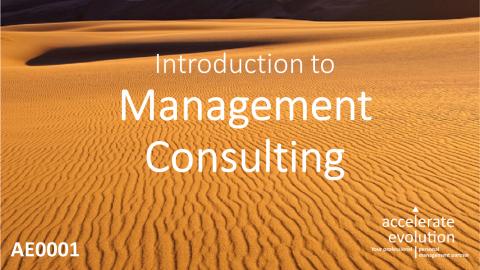 Management Consulting Basics (AE0001)