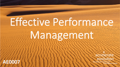 Effective Performance Management - From Appraisal to Personal Development - (AE0007)