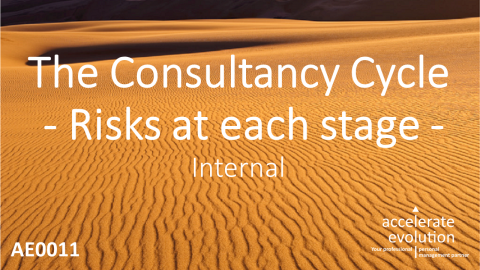 The Consultancy Cycle - Risks at Each Stage (AE0011)