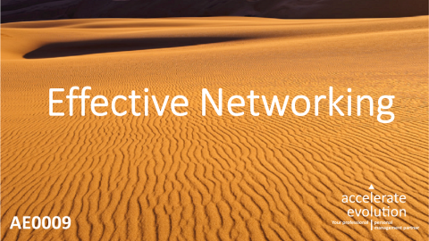 Effective Networking (AE0009)
