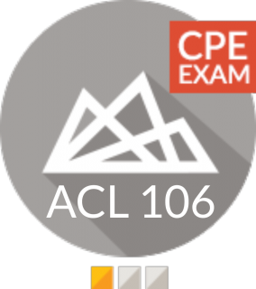 EXAM - Basics of scripting in Analytics (CPE) (ACL 106 V1 CPE EXAM)