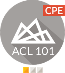 ACL Analytics Foundations (ACL 101)