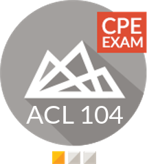 EXAM - Analyzing data in Analytics (CPE) (ACL 104 V1 CPE EXAM)