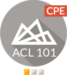 Foundations of Analytics Program (CPE) (ACL 101)