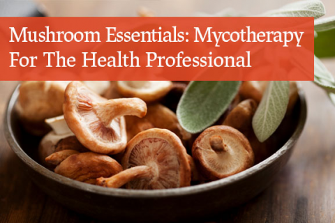 Mushroom Essentials: Mycotherapy For The Health Professional (4-Part)