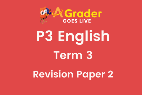 [FYE Revision Pack] P3EN - Term 3 Revision Paper 2 (3.10.38)