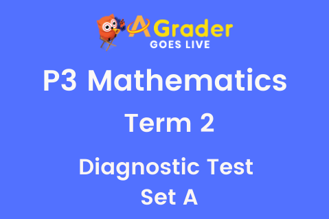 [Term 2 Revision Pack]  P3MA - Term 2 Diagnostic Test Set A (3.11.21)