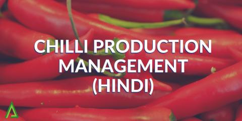 Chilli Production Management - HINDI (ALD002)