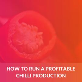 How to run a profitable Chilli production (e-book) (ALD007)