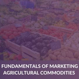 Learn the Fundamentals of Marketing Agricultural Commodities (Knowledge Booster) (ABNAP003)