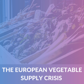 Lessons from the European Vegetable supply Crisis (Case Project) (ALP006)