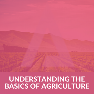 Understanding the basics of Agriculture - Practical approach (MC015)