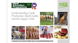 Beef - Understanding cattle production, beef quality and the supply chain