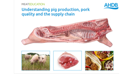 Pork - Understanding pig production, pork quality and the supply chain