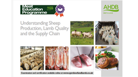 Lamb - Understanding sheep production, lamb quality and the supply chain