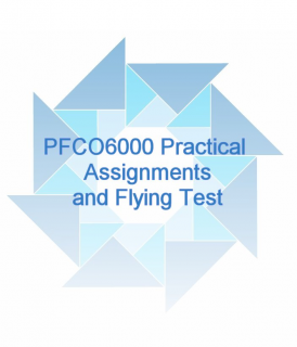 (STEP B) PFCO6000 Practical Assignments and Flying Test (GPFCO6000)