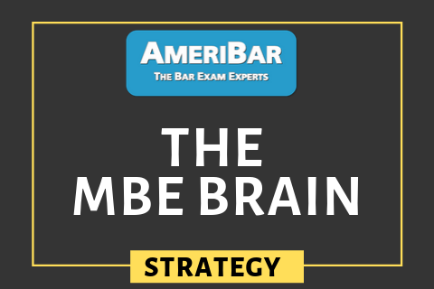 The MBE Brain (00180)