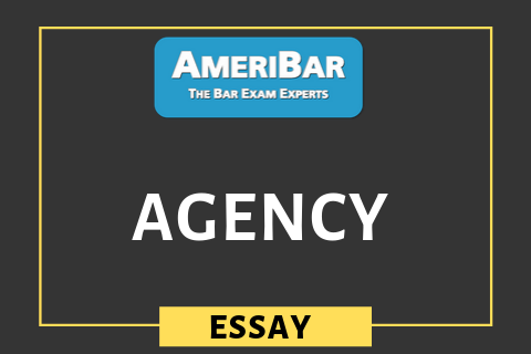Agency (03030)