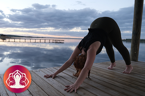 I AM Yoga® Advanced: Immersion Only Live Online - Oct/Nov 2020 (10022020-IAMYMIMI)