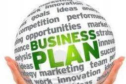 Business Plan (Pro01)