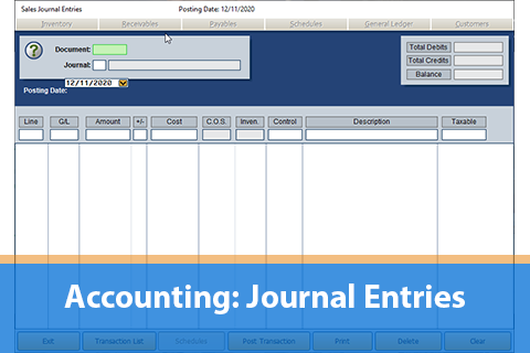 Module 3: Journal Entries FLEX DMS (DE_ACC110)