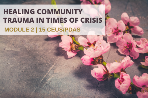 Healing Community Trauma in Times of Crisis: Module 2